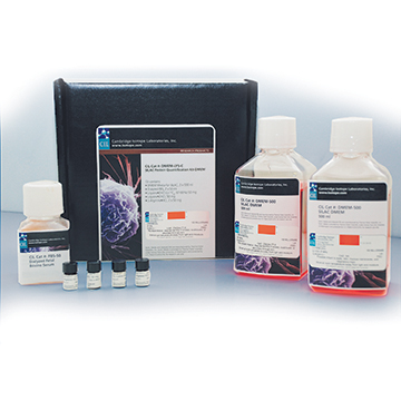 SILAC Kits and Reagents